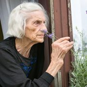 Can Parkinsons disease be smellt