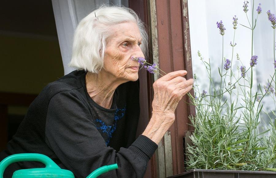 Early disagnosis of Parkinsons disease